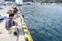 15_戸田港で釣り開始_DSCF1256
