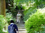 14_瑞泉寺の石段を進むDSCF2374 (180x135)