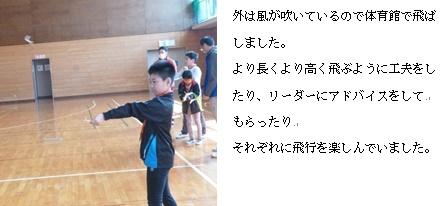 手賀84D
